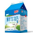 490ml屋顶鲜牛奶
